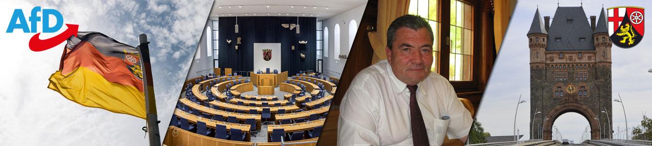 Heribert Friedmann, Stadtrat in Worms
